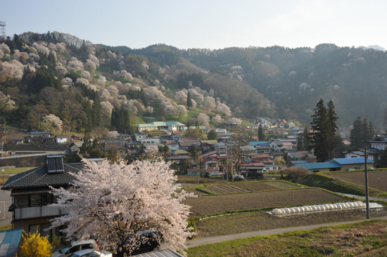 小川村2.jpg